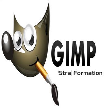 Formation gestion finance trésorerie logiciel gimp en Alsace