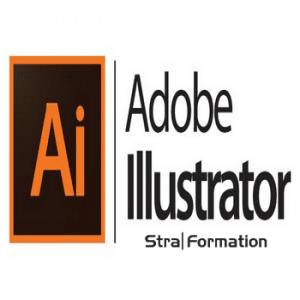 Formation infographie pao cao illustrator en Alsace